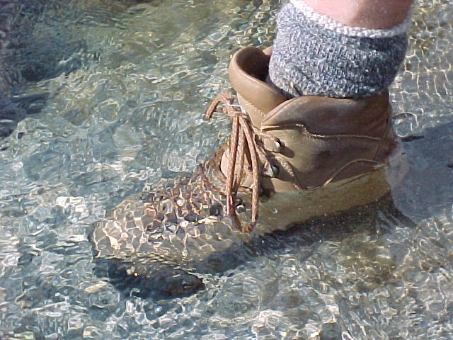 046_These_boots_were_made_for_swimming[1]